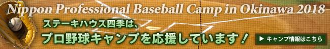 プロ野球キャンプ情報